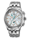 Citizen World Time Stainless Steel Watch - Silver
