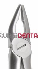 Max-Lite 7M, Upper Premolars