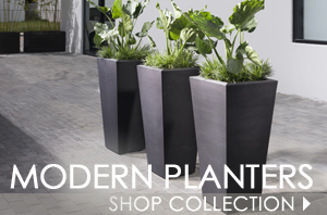 modernplanters-aug2017-copy.png