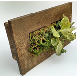 Mini Double Grovert Wall Planter - Brown