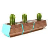 Boxcar Planter- Walnut and Blue