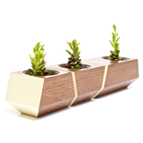 Boxcar Planter- Walnut and Bone White