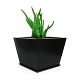 Zoid Planter with Tray