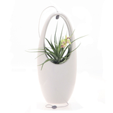 Hanging Aerium Egg- White