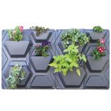 Hex Plantscape (2 Pack)