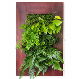 Grovert Wall Planter- Cherry