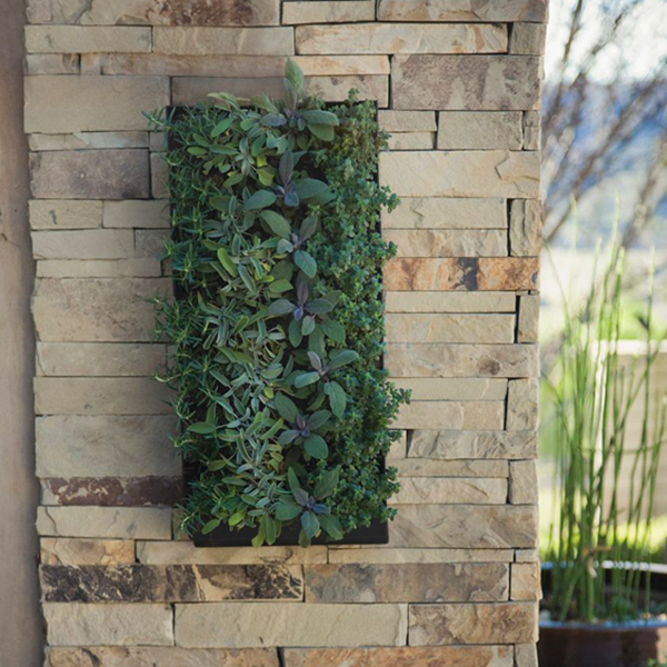 living wall planter grovert living wall planter with mounting bracket 31079