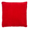 Back Red Pillow