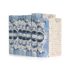 Linear Foot Blue European Beaux Arts Goddess Books
