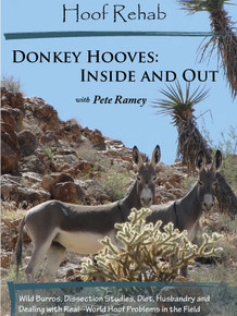 Donkey Hooves: Inside and Out