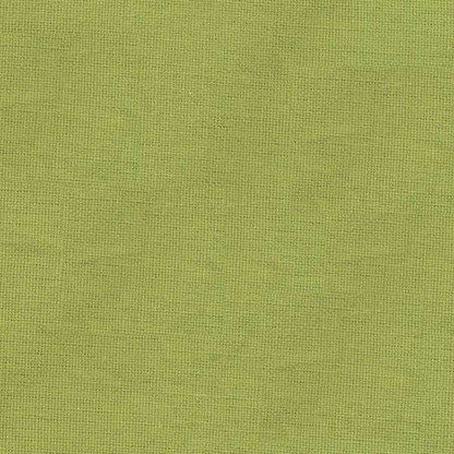 Solid Plain Weave Tea Towel 20in x 28in Lime Green