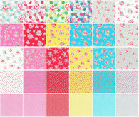 2-1/2in Strips Flower Sugar Spring 42 Pieces
