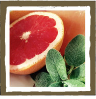 grapefruit sage (tin)