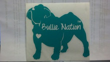 Bullie Nation Car Decal- Teal