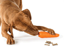 Planet Dog Orbee-Tuff® Carrot with Treat Spot™