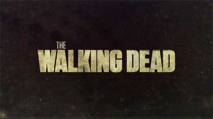 the-walking-dead-header.jpg