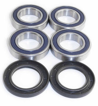 Front Differential Bearing Seal for Arctic Cat  500 4x4 AT MT 2000 2001