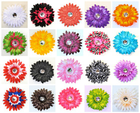 Assorted Gerber Daisy Flower Clips