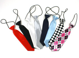 Assorted Boy's Neck Tie