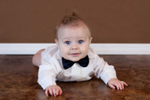 Navy Blue Bow Ties