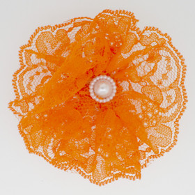 Orange Lace Flowers