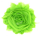 Lime Green Shabby Flowers
