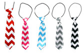 Assorted Chevron Boy's Neck Ties