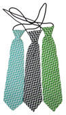 Assorted Chevron Neck Ties