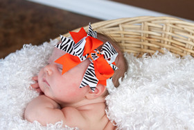 Zebra Orange Double Tied Bows