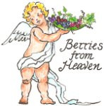 Berries from Heaven ~ 16 oz