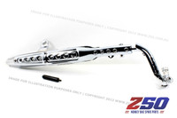 Exhaust Muffler Assy (Dax, Silver Chromed Pipe & Protector)