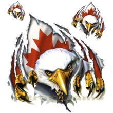 Canada Rip N Tear Eagle Decals