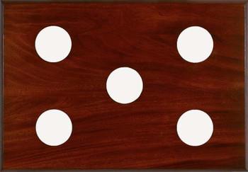 5-Instrument Mahogany Panel