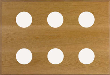 6-Instrument Oak Panel