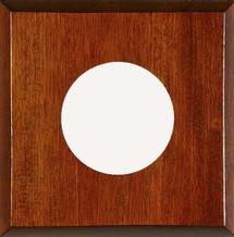 1-Instrument Mahogany Panel
