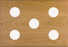 5-Instrument Oak Panel
