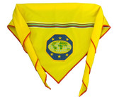 Pathfinder Master Guide Embroidered Scarf