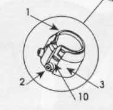 cat-45-hornup-3.png