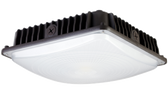 45 Watt LED Canopy Light