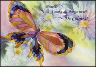 DeColores Paper Encouragement Cards - Daisy Butterfly