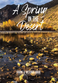 A Spring in the Desert Rediscovering the Water of Life in Lent