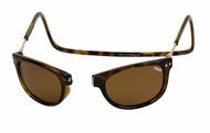 Clic Sunglasses - Ashbury Tortoise