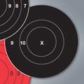 "TargDots® Bullseye 3"" Timed & Rapid Fire 50-PK"