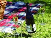Garden Picnic Wine Bottle & 2 Glass Holders