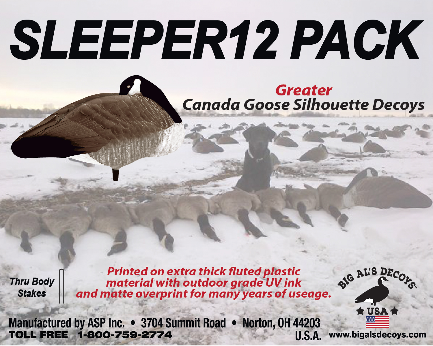 sleeper-8x10-label-2019-web1.jpg