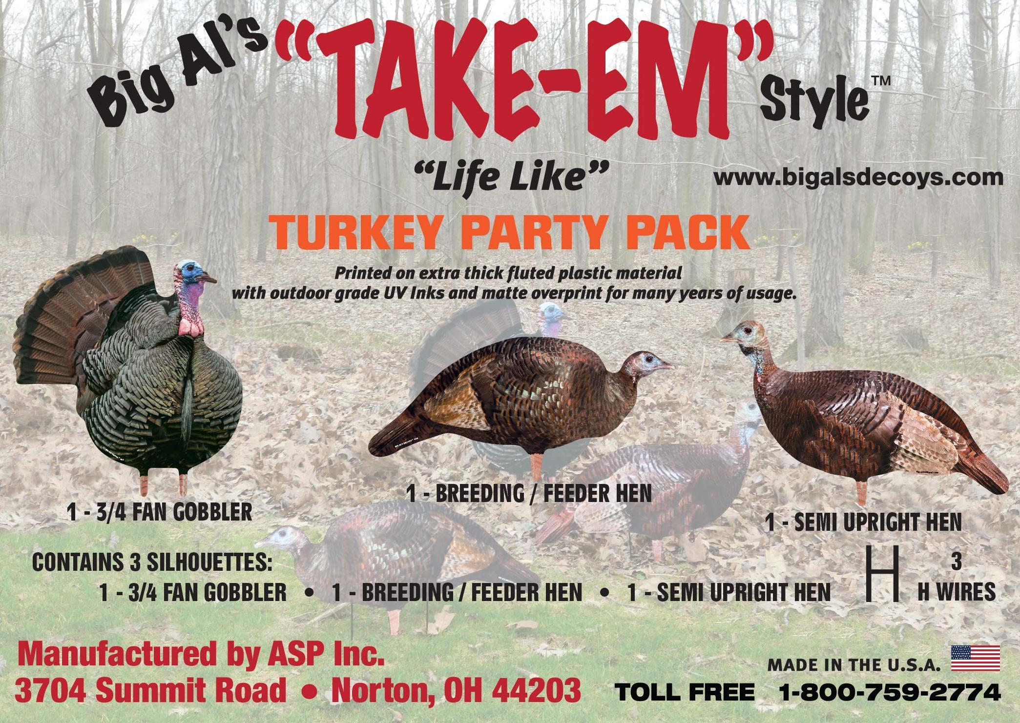 turkey3crop.jpg