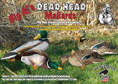 Dead Head Mallards