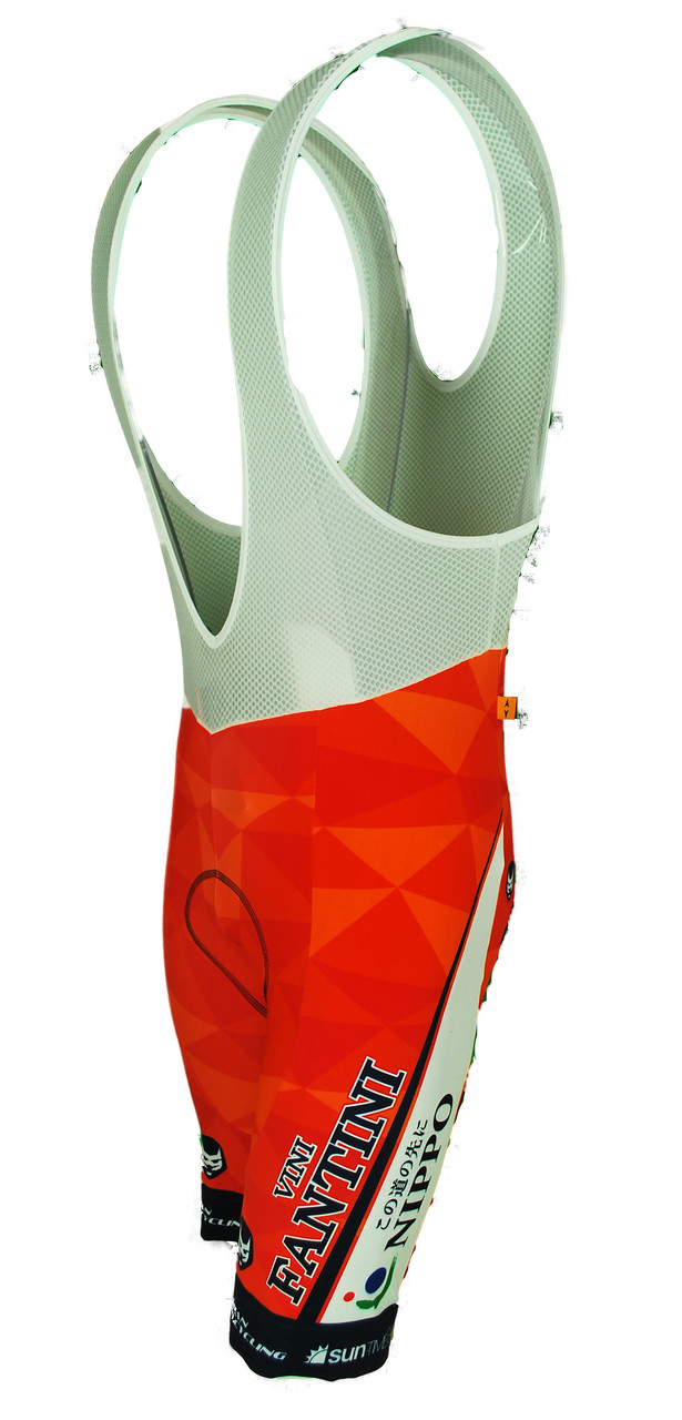 2017 Vini Fantini Nippo Bib Shorts Front
