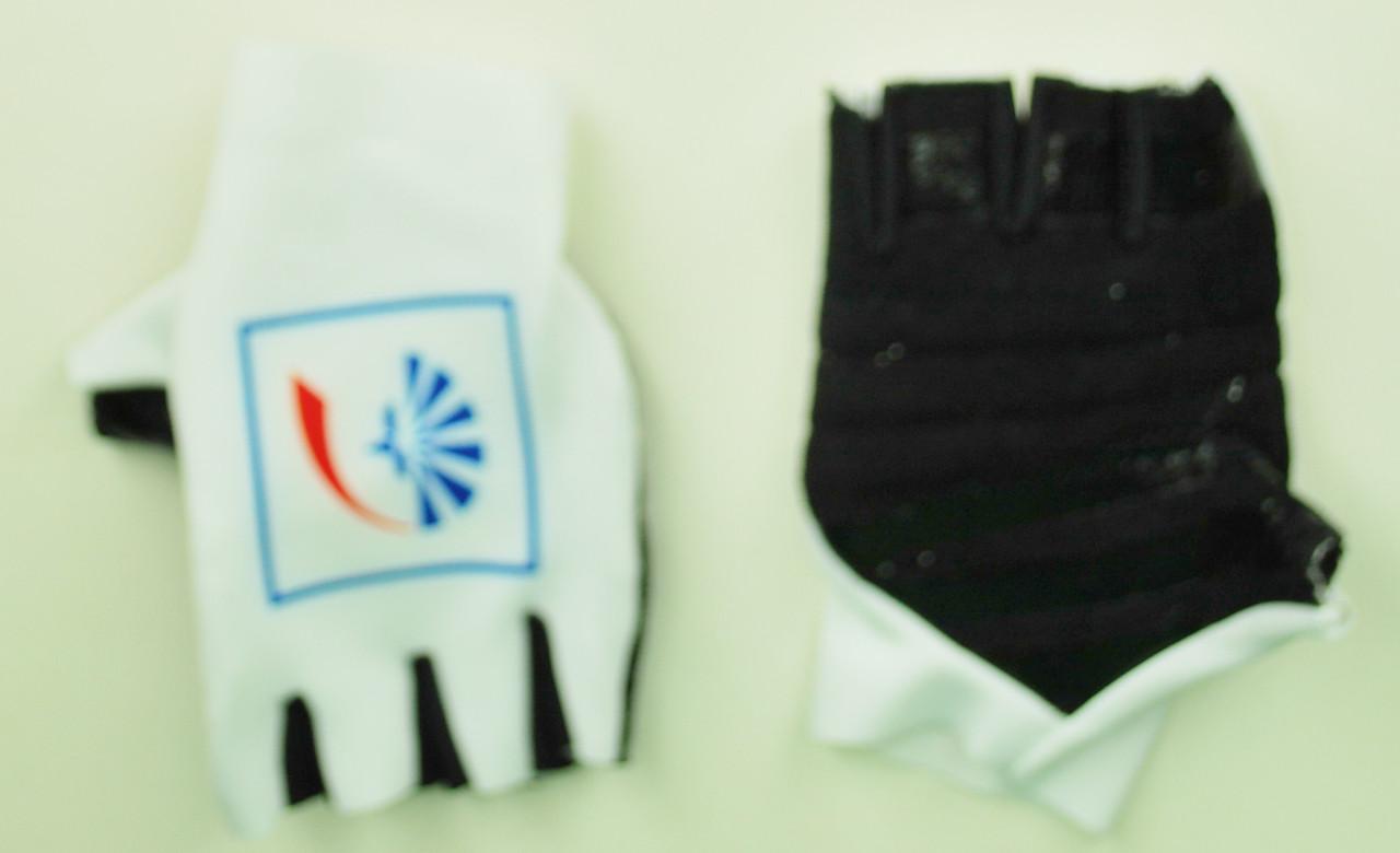 2018 Groupeama FDJ Gloves