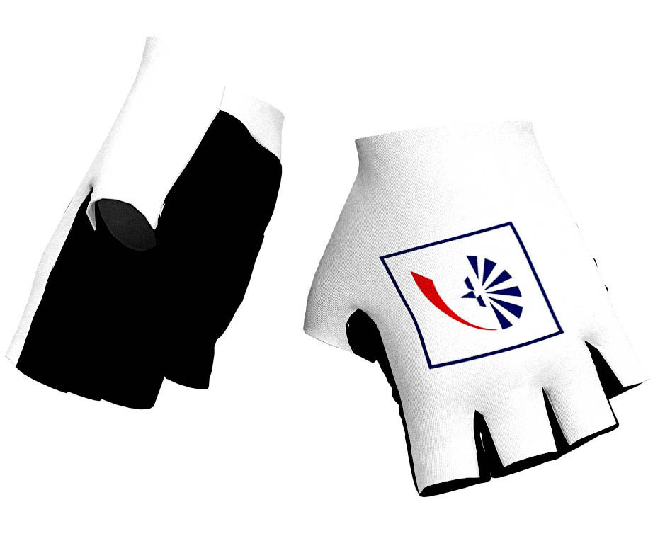 2019 Groupama FDJ Gloves